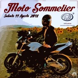Moto Sommelier