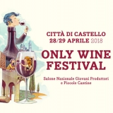 Only Wine Festival