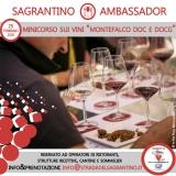 Sagrantino Ambassador